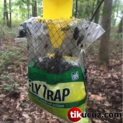 Fly Trap Doğal Sinek Kapanı